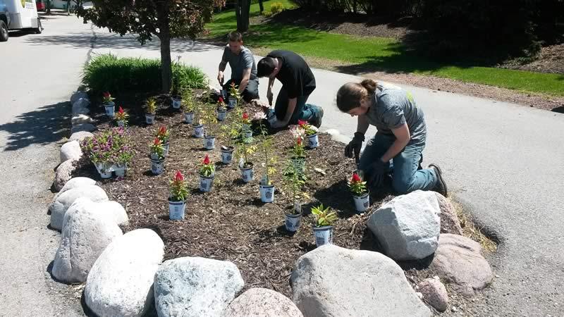 landscape porfolio - planting garden