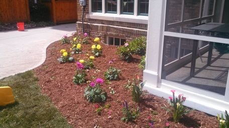 landscaping portfolio flowers - Creative Touch Landscape Services